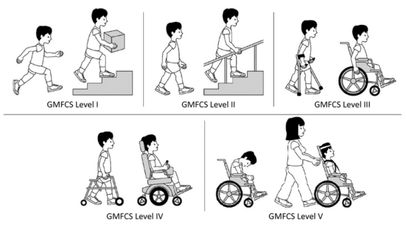 Gross-motor-function-classification-system